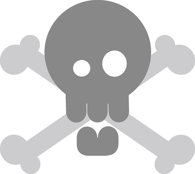 pirate-148432_640